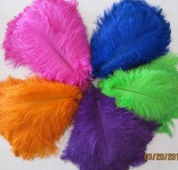 Free shipping by DHL&EMS Promotion/Wholesale 100pcs/lot 26-28 Ostrich Feather Plume FREE SHIPPING