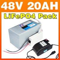 48V 20AH LiFePO4 Pack + BMS / 6A Charger For E-bike