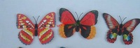 5000pcs/lot luminous butterfly