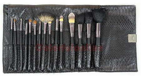 Free Shipping High quality 15 pcs Make Up Brush Set Serpentine case wholesale/retail(China (Mainland))
