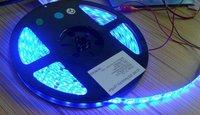 5m blue color flexible LED Strip;5050 SMD;60LEDs/m,waterproof by epoxy coating;DC12V input