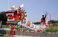 2011 hot summer toys kites 3D dragon kite cheap kite free shipping