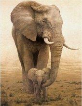 elephant oil painting price