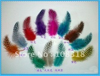 Free shipping,Diy feather accessories Colored pearl feather Decoration feather,hair / clothes accessories 100pcs/lot