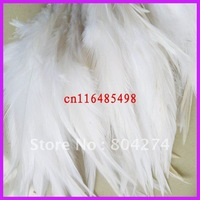 ym57 100pcs/pack rooster feather 10-15cm free shipping