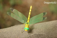 "Wholesale Handicrafted ECO 2"" Yellow Dragonfly Fridge Magnet Sticker Insect Christmas Home Decor 120pcs Mixed Lot Free Shipping"