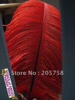 "CLEARANCE SALE!! wholesale 100pcs/lot 12-14"" Red Ostrich Feather Plume FREE SHIPPING"