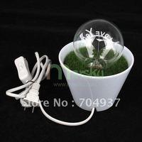 Funny romantic night light / Flowerpot shape night light #1463