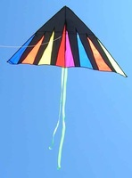 1piece kite single line kites flying Triangle kite hot sale kite  free shipping