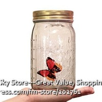 110613A-New Creative Butterfly Jar Touch Controlled Flying like in Nature Best Gift Toy for Girl Good Quality Novel Free Shiping
