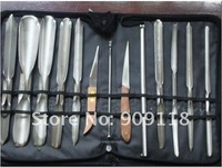 Pro 1 Set Vegetable Fruit Carving Chisel 13 pcs Tool Chef Kit Type A Free Shipping