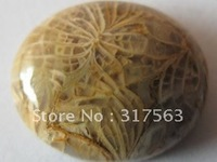 Natural Stone Coral fossil Jasper 15*20 mm Oval Semi Gemstone Cabochons.Free shipping