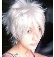 New NEW Vampire Knight Zero Smoke Silver White Cosplay Wig
