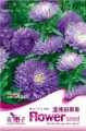 Free Shipping 3 Bags of Blue China aster flower Seeds * 50 Seeds per Bag
