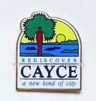 School lapel pins, school emblem, printing pin badge