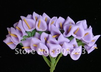 Free Shipping 144pc Mini Calla Lily Flower Wedding Favor Decor Scrapbooking wholesale/ retail   Hyacinth