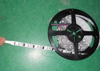 non-waterproof5m led digital strip,DC5V input,WS2801IC;32pcs IC and 32pcs 5050 SMD RGB each meter;without controller