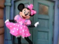 Mickey and Minnie mouse Mascot Costume Free Shipping