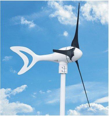 Mini Turbine Windmill For Home Electricity