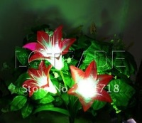Solar LED Flower Light