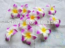 cheap exotic flower