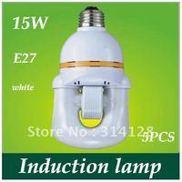 U style 15W Electrodeless induction lamp 5PCS