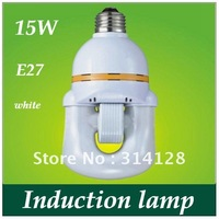 U style Induction lamp Integration of low-frequency electrodeless lamp 15W energy-saving light