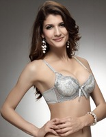 New Embroidery Women's Sexy Seamless Bra,Charm Hygienical Design Bamboo Fiber Ladies Lace Brassiere Silver Cheap Supplied