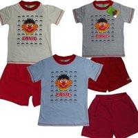 Пижама для мальчиков sleepsuit