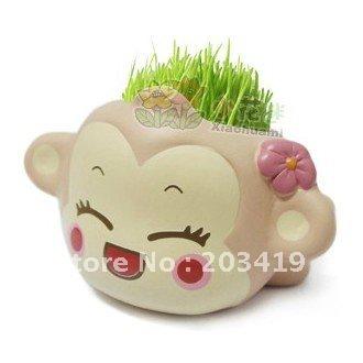 cartoon Gift Hair man monkey Plant Bonsai Grass Doll Office Mini Plant Fantastic Home Decor pot+seeds wholesale retail(China (Mainland))