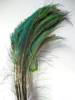 Top quality peacock feather,100pcs/lot length 8-10 inches ,beautiful natural peacock feather,Free Shipping!