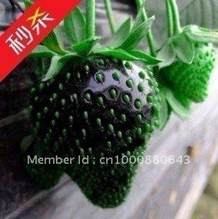 10pcs/bag Black Strawberry Seeds DIY Home Garden