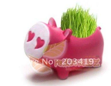unique heart pig cute Hair man Plant Bonsai Grass Doll Office Mini Plant Fantastic Home Decor pot+seeds wholesale retail(China (Mainland))