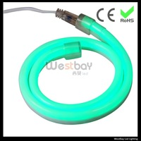 Mini size 10*22mm green led neon flex even light effect with competitive price, 5m a lot high quality neon to replace glass neon