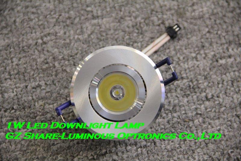 Professional! High Quality 1W LED Downlight! 110lm/w/ac85-265V/2800k-6500k/Customized CCT/Super treatments/DHL Free Shipping(China (Mainland))