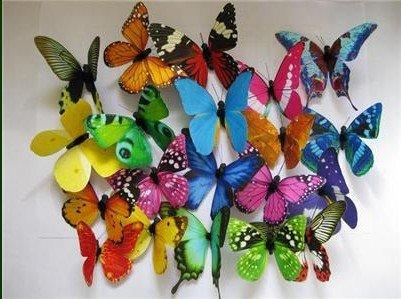 Online kopen wholesale vlinder magneten prijzen uit china vlinder magneten prijzen groothandel - Kleur gemengde kamer ...