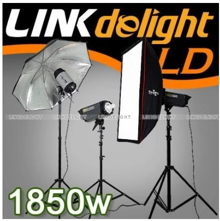 1850W (1000w+600w+250w) Triple Head Studio Flash light Kit T18 D4N(BC5) FREE SHIPPING(China (Mainland))
