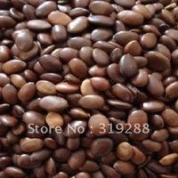 5pcs/bag Gleditsia tree Seeds DIY Home Garden