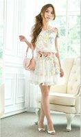 Korean summer women's Floral elastic waist chiffon dress