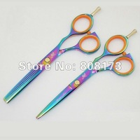 "5.5"" 9CR Steel Color Focus Hair Cut Scissors 1Set/Lot Free Shipping"