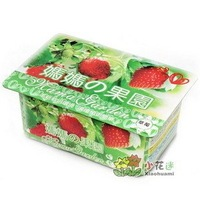 Creative Gift Plant can pot flower Office Mini Fantastic DIY Home Decoration mini Orchard Strawberry