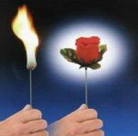 Magic torch to rose magic trick,10pcs/lot,magic rose,magic toy,magic prop,magic show,magic,magic set,
