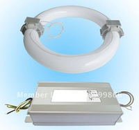 Free Shipping Energy-saving Low Frequency 350W Electrodeless Induction Lighting and Ballast Kit