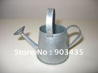 Ditressed Mini Metal Watering Pot Home decor Garden Supplies flower pot desktop decoration
