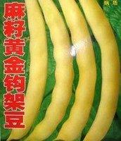 10pcs/bag golden beans vegetable Seeds DIY Home Garden