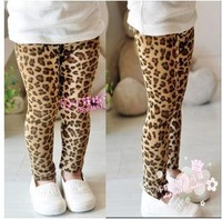 Free Shipping Children Leggings Girls Classic Leopard Leggings.5 pcs/lot