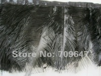 Перья 2meters/6/8 Strau enfedern trimmen Strau enfedern Schwarzwei Farbe erh ltlich versandkostenfrei
