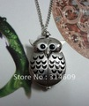 Free Shipping New Antique Chrome Necklace Vintage Owl Quartz Pocket Watch With Chain