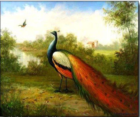 """Pintura a óleo animal da arte do artesanato: bonito polegada x 20 do pavão 24 de """" (nenhum quadro)"""