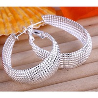 Fashion jewelry 925 Silver Free Shipping Web Earrings E064